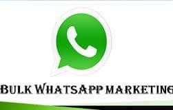 Bulk WhatsApp Marketing