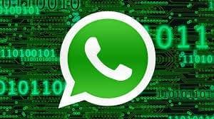 WhatsApp Panel