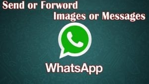 WhatsApp Forwarded Message Feature