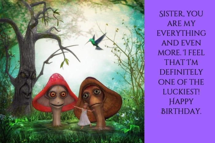 Happy Birthday Sister meme