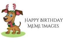happy birthday meme images