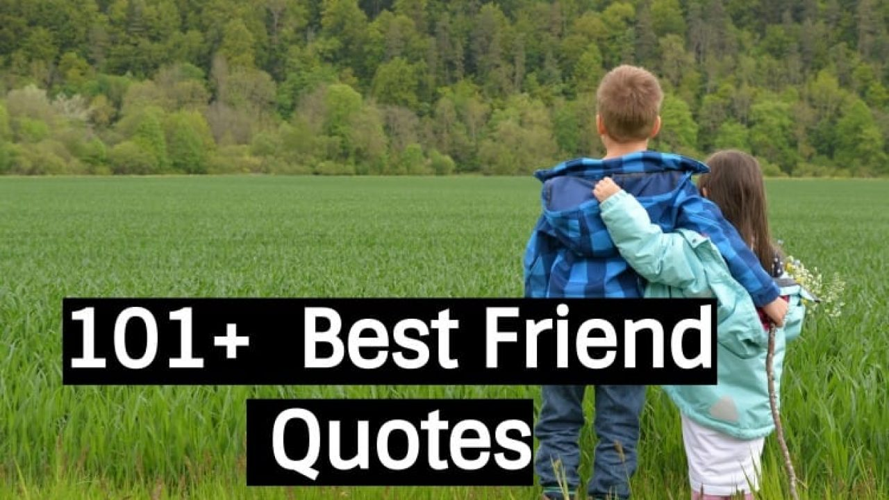 101+ Best friend Quotes - Funny, Cute, Short, Birthday