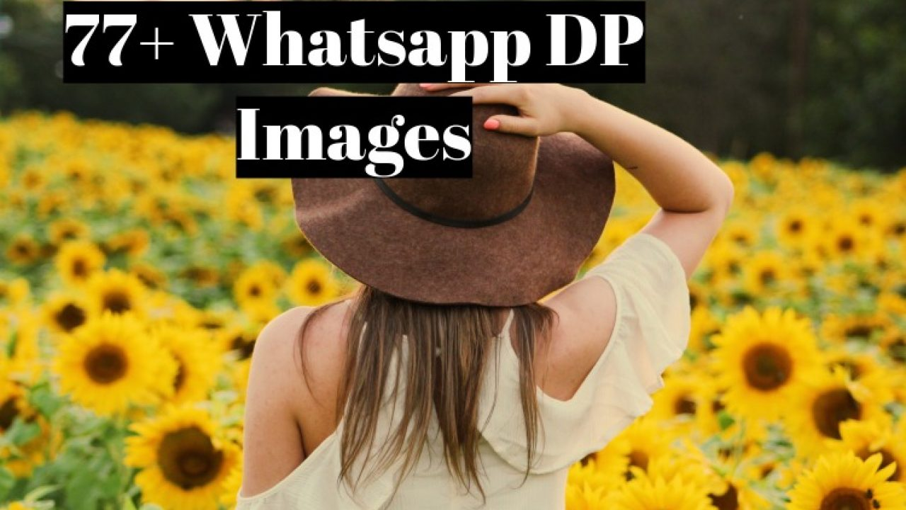 77 Best Whatsapp Dp Images And Status For Girls And Boys In 2020