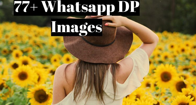 77 + whatsapp dp images