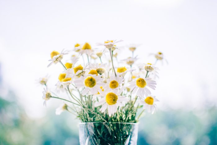 Flower Decoration Images