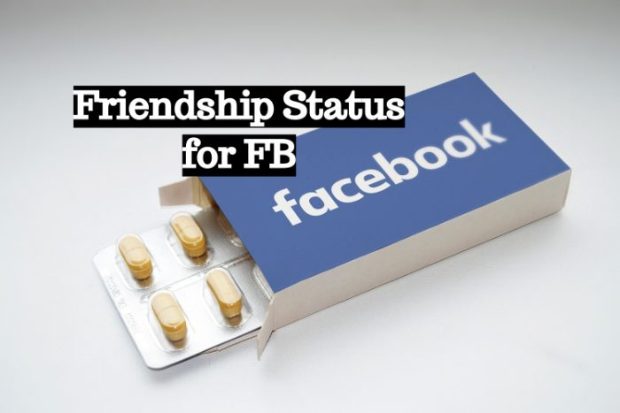 Friendship Status for FB