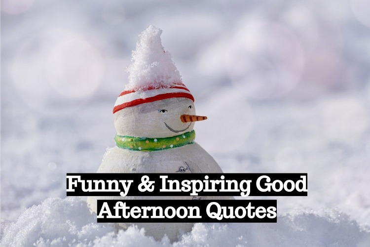 Funny Inspiring Good Afternoon Quotes