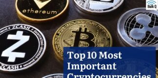 Top 10 Most Important Cryptocurrencies